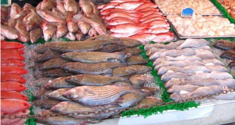 pescaderia-1400808464